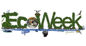 Image result for eco week